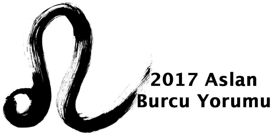 2017 Aslan Burcu