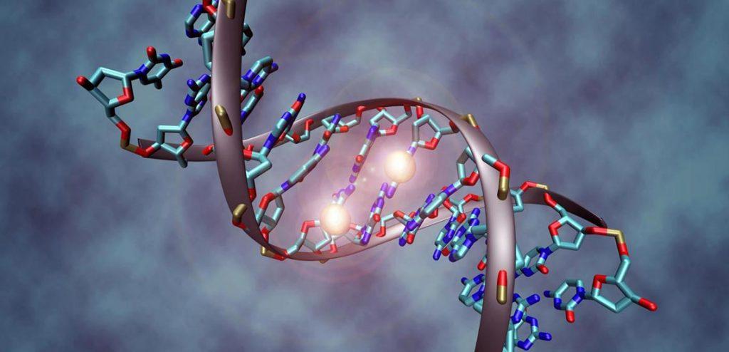genetik şifreleri taşıyacak hafıza kartları