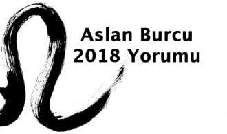 2018 aslan burcu yorumu